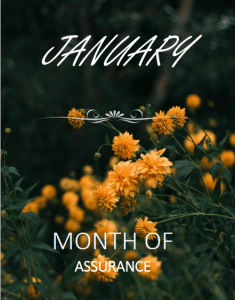 January-screenshot